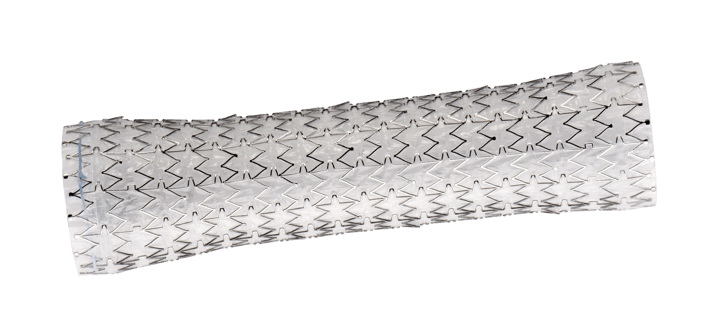 AliMAXX-ES Fully Covered Esophageal Stent