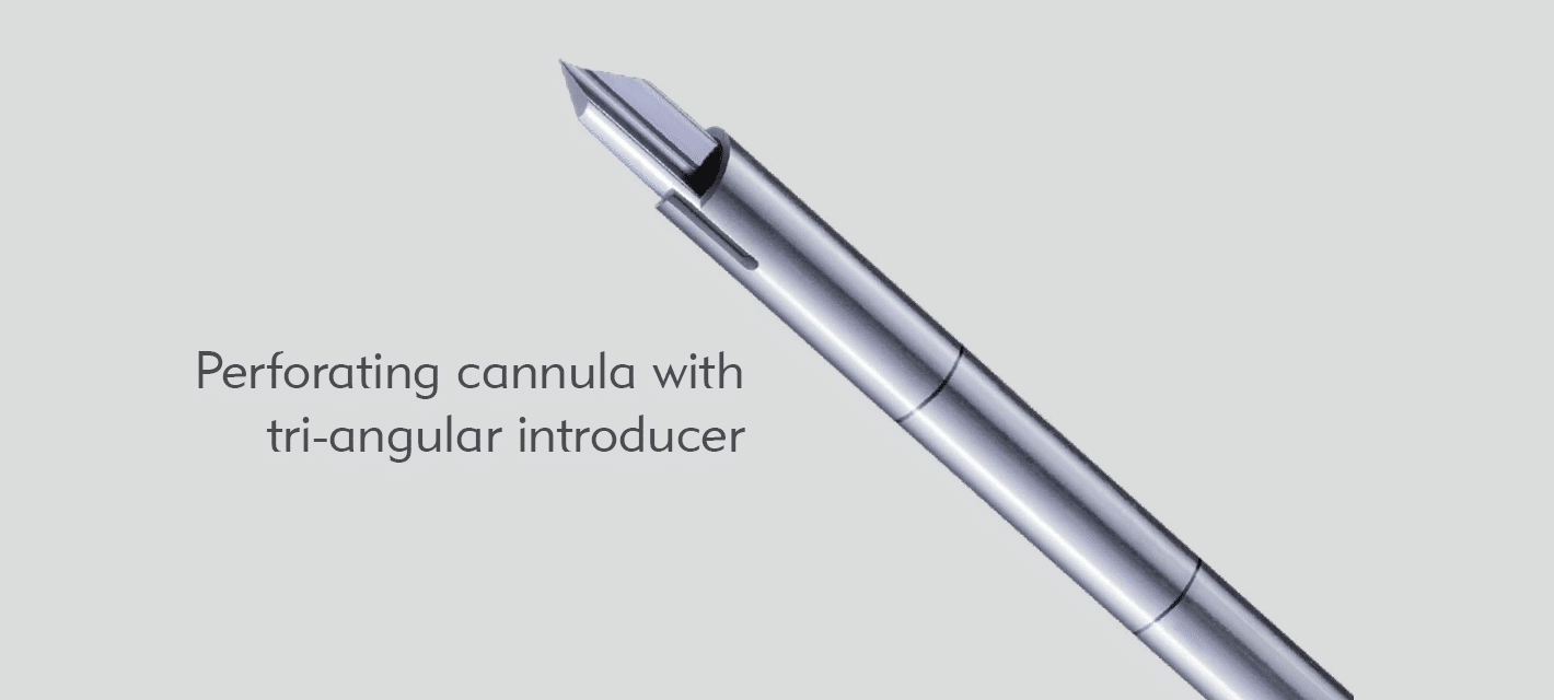 Huntington Perforating cannula with tri-angular introducer