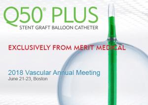 Q50-PLUS Stent Graft Balloon Catheter