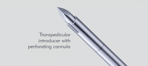 Transpedicular Introducer with Perforating Cannula