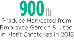 Merit Sustainability - Produce Harvested and Used