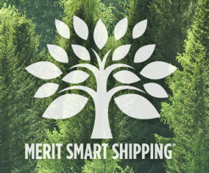 Merit Medical - 2019 Green Business Award - Utah Business - Environmental Sustainability