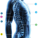 Bone Biopsy System from Merit Medical Systems, Inc