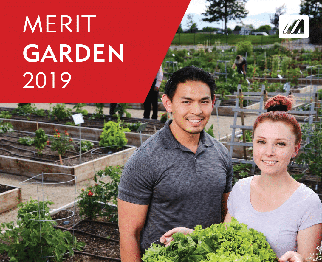 Merit Medical Garden 2019 Accomplishments - Employee Experience