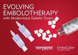 Evolving Embolotherapy at Merit with Modernized Gelatin Foam - Understand. Innovate. Deliver.