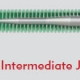 GO2 Wire - Intermediate J Tip Configuration - Merit Medical