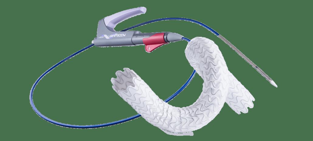 Maintain Long-Term Vessel Patency - Merit WRAPSODY