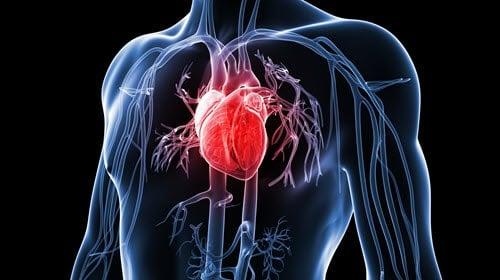 Heart Attack - Men's Health