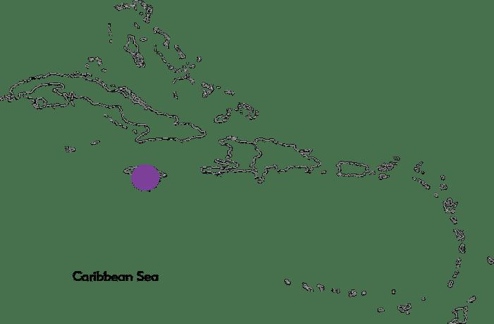 Bridge of Life Foundation - Jamaica - Philanthropy